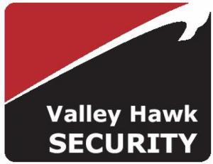 Valley Hawk