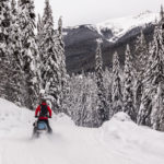 Snowmobile Forester Trail